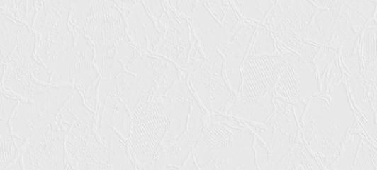 Шпалери вініл. SINTRA Maxi wall п/фарб. 0.53*15м біл. 435007 (п)
