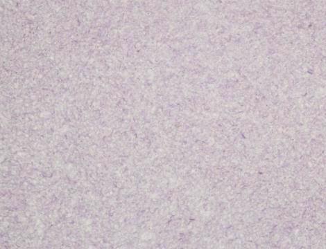 Шпалери рідкі SILK PLASTER Майстер-Шовк MS-12 фіолет. 900г